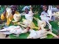 Country Chicken Gravy | Nattu Kozhi Kulambu | Cooking Traditional Village Country Chicken Recipe