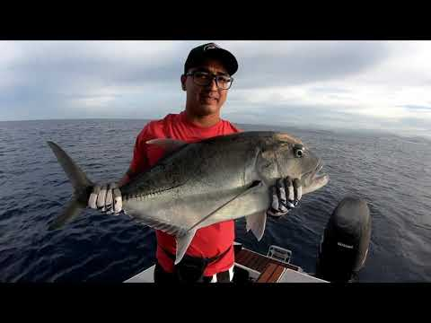 Extrem sport fishing ESF ep 34 casting fishing in good place !