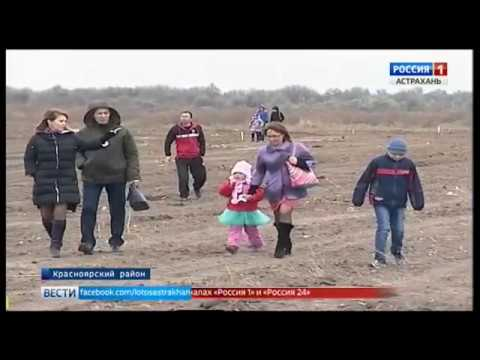 Порядка 20 многодетных семей Красноярского района уже получили земельные участки