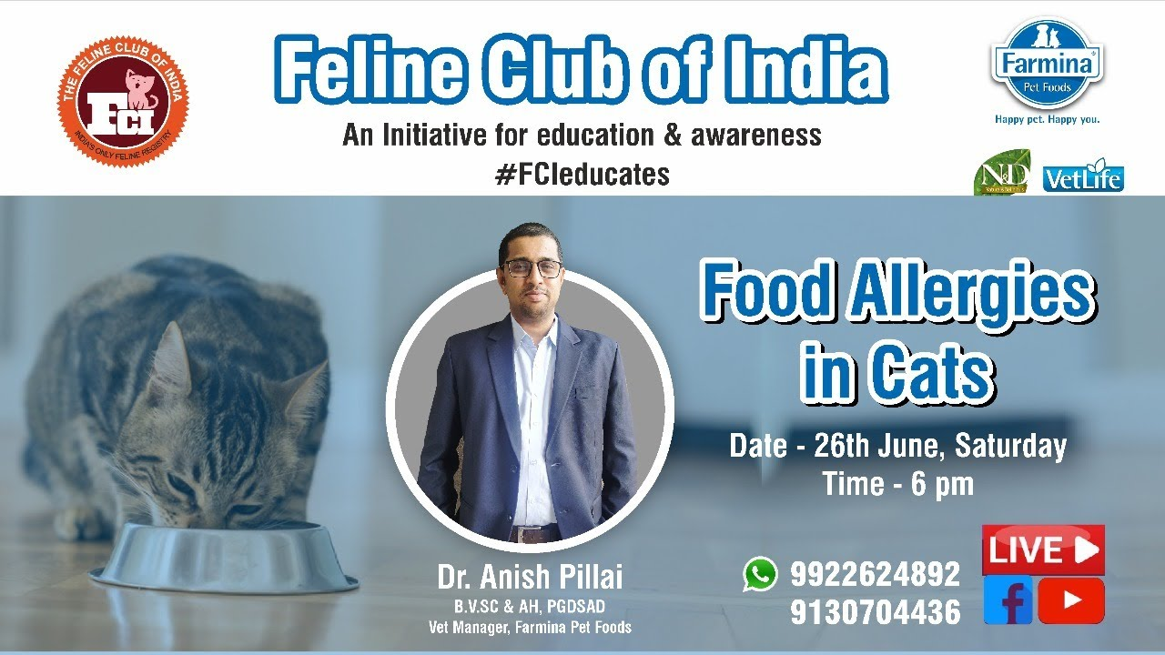 Webinar #21 : Food Allergies in Cats with Farmina Pet Foods