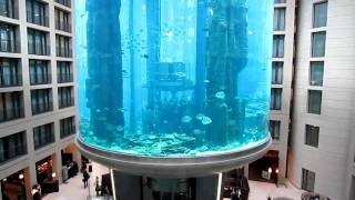 Aqua Dom, the really big aquarium (with a lift inside!) in the middle of hotel, Berlin, Germany
