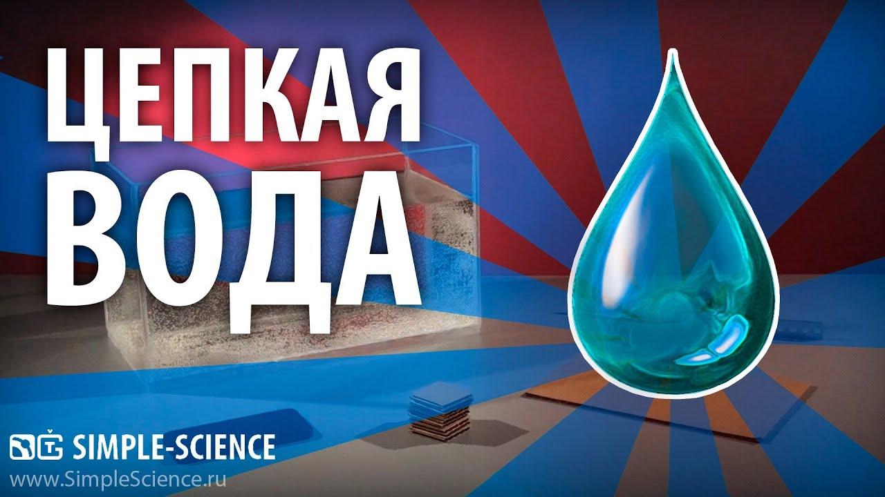 Цепкая вода - физические опыты