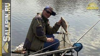 Екшн рибалка на каналі 27.04.2014 (штекер, плотва, підлящик) [salapinru]