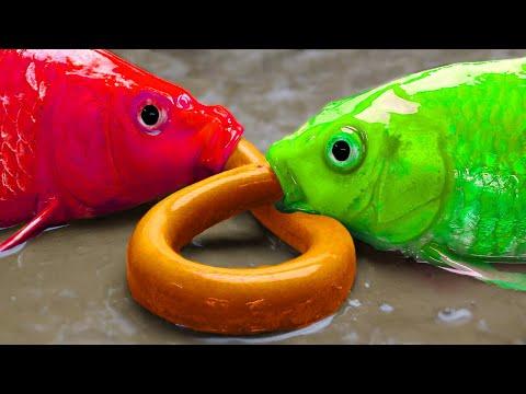 Big Fish Hunting Eel | Stop Motion ASMR | Unusual Mud – Mukbang Cooking IRL 4K Funny