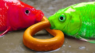 Big Fish Hunting Eel   Stop Motion ASMR   Unusual Mud - Mukbang Cooking IRL 4K Funny