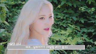 이달의소녀탐구 #377 (LOONA TV #377)