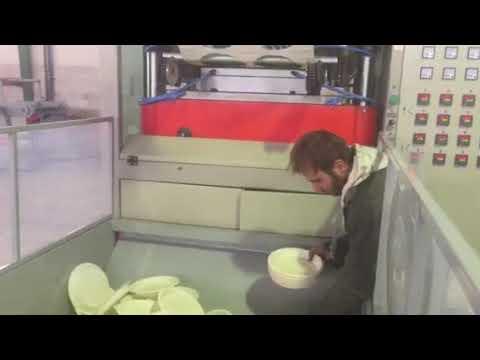 TQC 650B Iran biodegradable cornstarch plate making machine