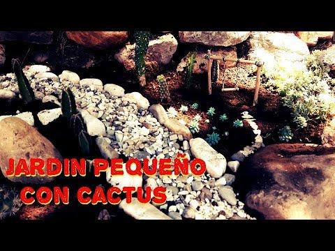 Como decorar un jard n peque o con cactus y piedras - Jardines con cactus y piedras ...