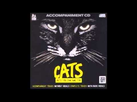 Cats Karaoke- The Ad-dressing of cats