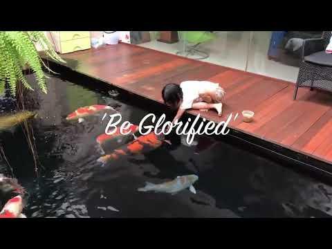 kolam koi di teras belakang rumah - youtube