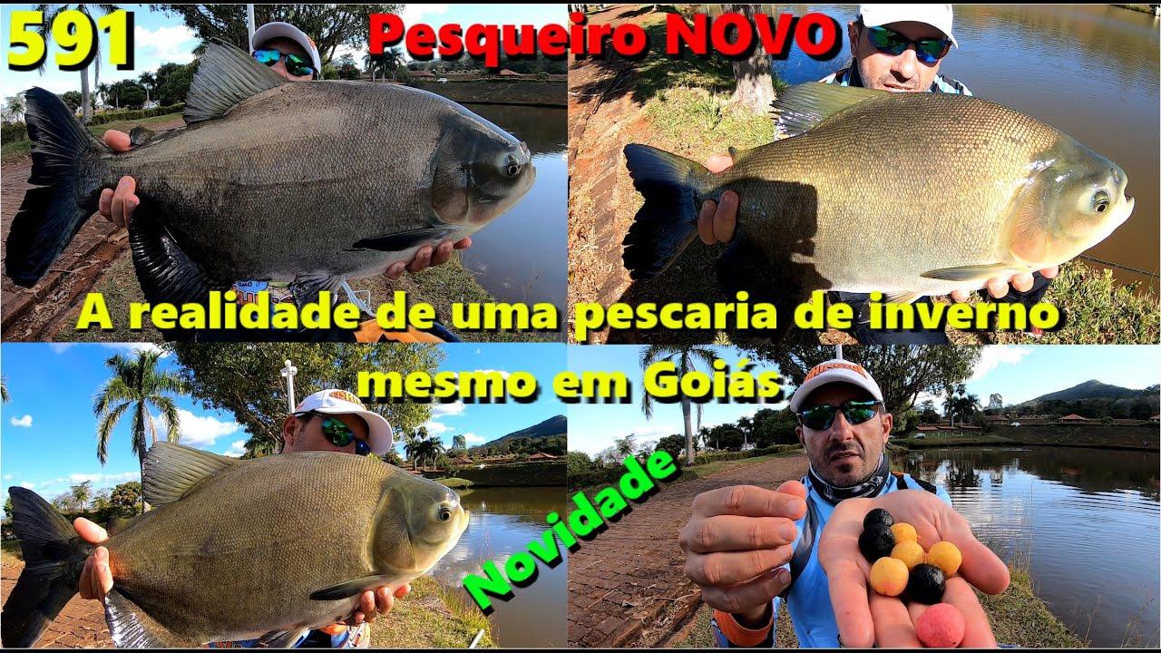 Pousada da Serra - Mais uma nova opção de pesca em Goiás - Programa 591