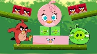 Angry Birds Kick Piggies - ROUND STELLA KICK OUT SQUARE PIGS!