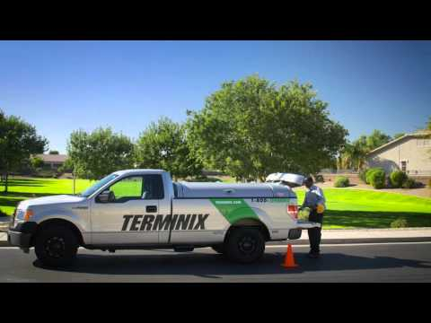 Day In The Life - Service Technician