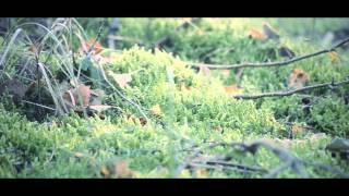 Asa/With Joyful Lips/Stumbleine - Françoise, Forgotten, Leave The Light On Remix - OFFICIAL VIDEO