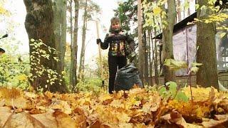 видео Листва как удобрение: опавшие листья, грецкого ореха