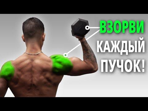 Тренировка плеч гантелями. Лучшие упражнения на плечи. Для набора массы и симметрии