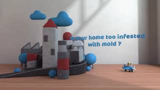 Mold Inspection & Mold Removal South Tucson AZ (520) 214-7214