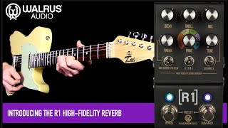Walrus Audio MAKO Series R1 High-Fidelity Reverb