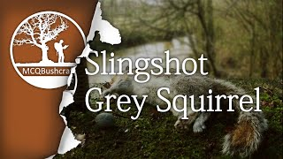 Hunting: Slingshot on Grey Squirrel