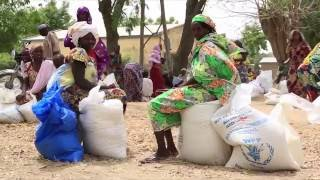 Science, Technology and Innovation for Sustainable Development