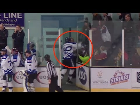 English Hockey Player PUNCHES a Fan, Has Contract Immediately Terminated