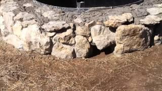 "Justin Texas Backyard Stone Fire Pit  ""homemade"""