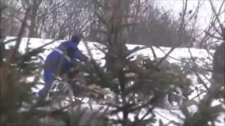 Rómska hliadka asistuje pri krádeži dreva
