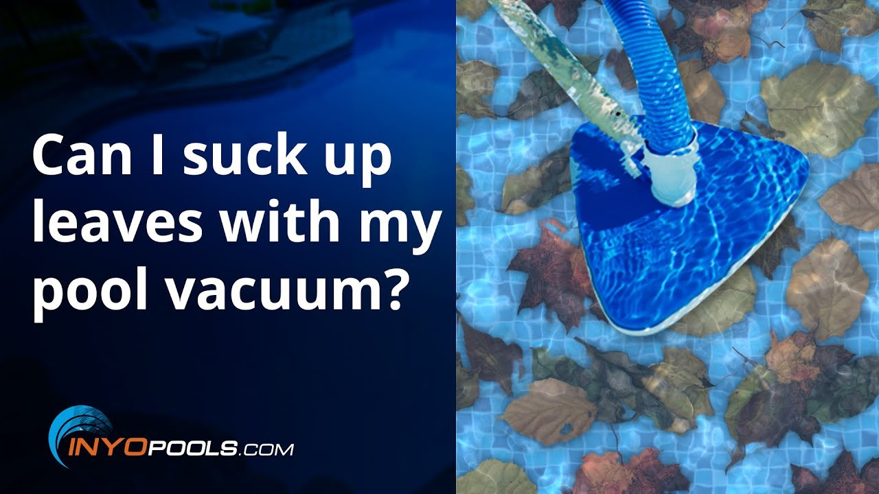 PSC Ep. 80: How do I remove leaves from my swimming pool ...
