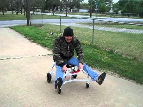 Homemade dog cart