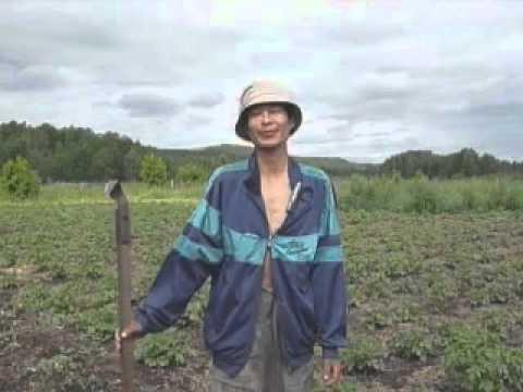 видео: Ленивый огород (полная версия)