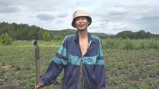 Ленивый огород (полная версия)(, 2012-05-18T15:53:52.000Z)