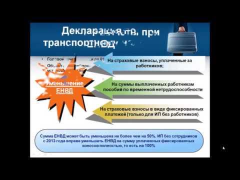 Учет и отчетность ИП на ЕНВД