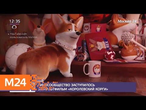"""Киносообщество заступилось за мультфильм """"Королевский корги"""" - Москва 24"""