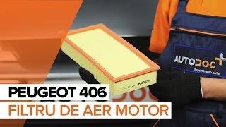 Reparații PEUGEOT 406 cu propriile mâini - ghid video auto descărca