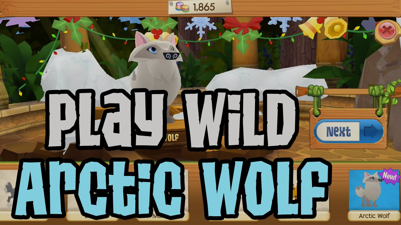 Image of: Jam Play Wild How To Get An Arctic Wolf In Play Wild Animal Jam World Play Wild Wiki Fandom How To Get An Arctic Wolf In Play Wild Youtube