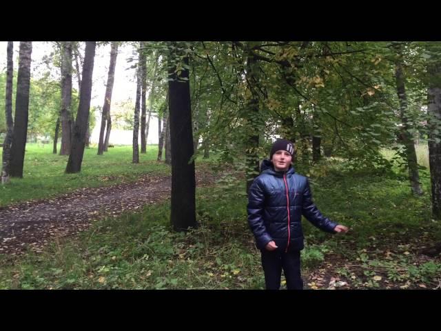 Арсений Веселов читает произведение «Листопад» (Бунин Иван Алексеевич)