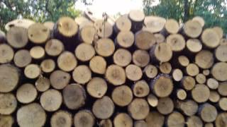 видео дрова недорого