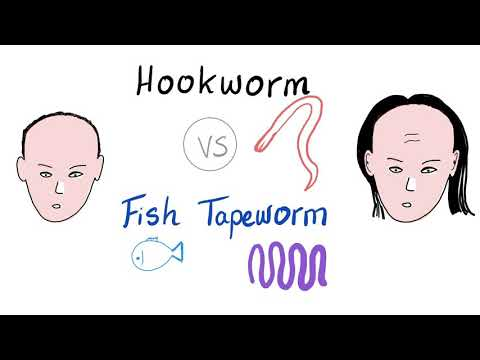 Hookworm VS Fish Tapeworm 🐟   Ancylostoma/Necator VS Diphyllobothrium Latum