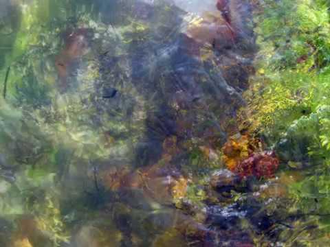 Harmonic Meditation ~ David Hykes
