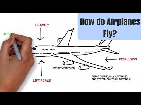हवाई जहाज कैसे उड़ता है?    How Do Airplanes Fly? (Under 5 Minutes)    Hindi   