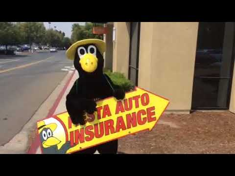 FIESTA AUTO INSURANCE CROW IN PITTSBURG, CA.