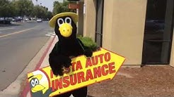 FIESTA AUTO INSURANCE CROW IN PITTSBURG, CA.