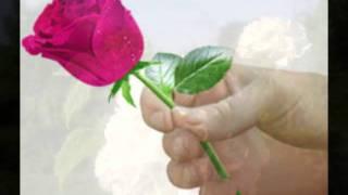 Mati Nuude - Lilleõis