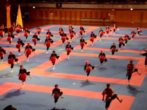 Okinawan International Karate Tournament 2009 opening ...