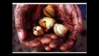 Jenny Picking Cockles