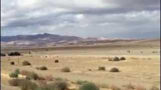 BMW N54 335i vs Corvette Z06 640whp  (Iphone Vide )