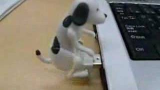 the humping USB Dog.