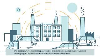Как интегрировать навыки и ценности для устойчивого развития в процессе образовательной реформы