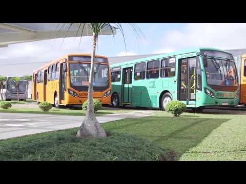 Curitiba pede veículos elétricos em seu futuro