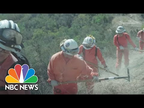 California On Fire: These Female Inmates Are Fighting the Blazes | NBC News